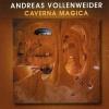 Andreas Vollenweider     - Angoh