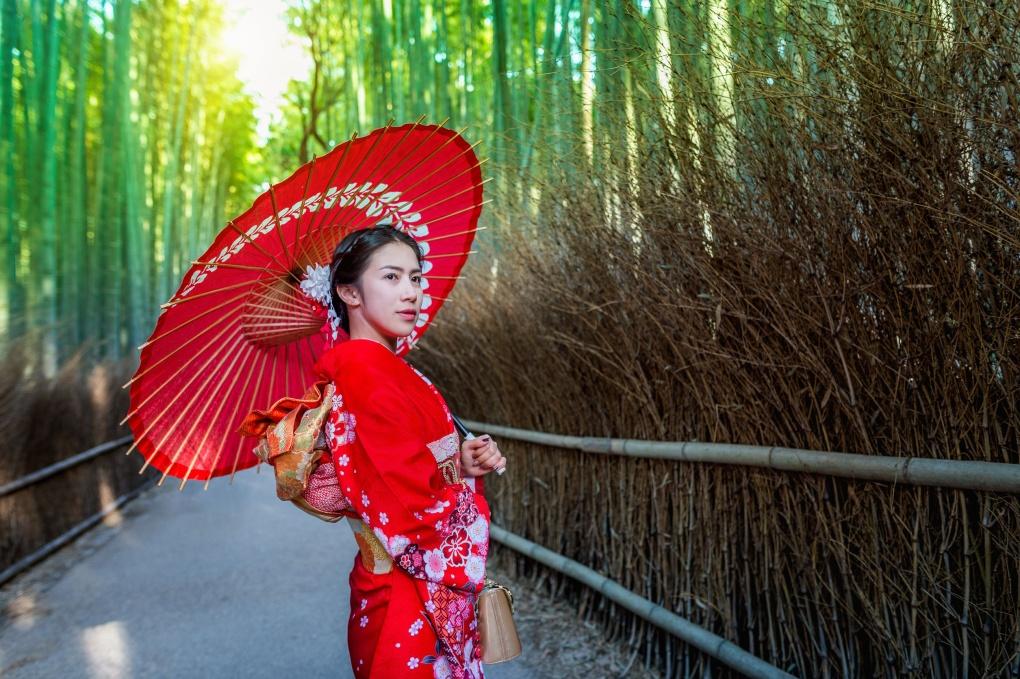 Бамбуковый лес в стране восходящего солнца