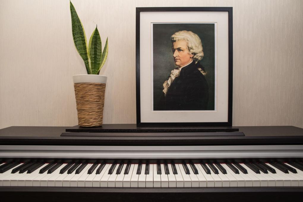 10 интересных фактов из жизни Вольфганга Амадея Моцарта